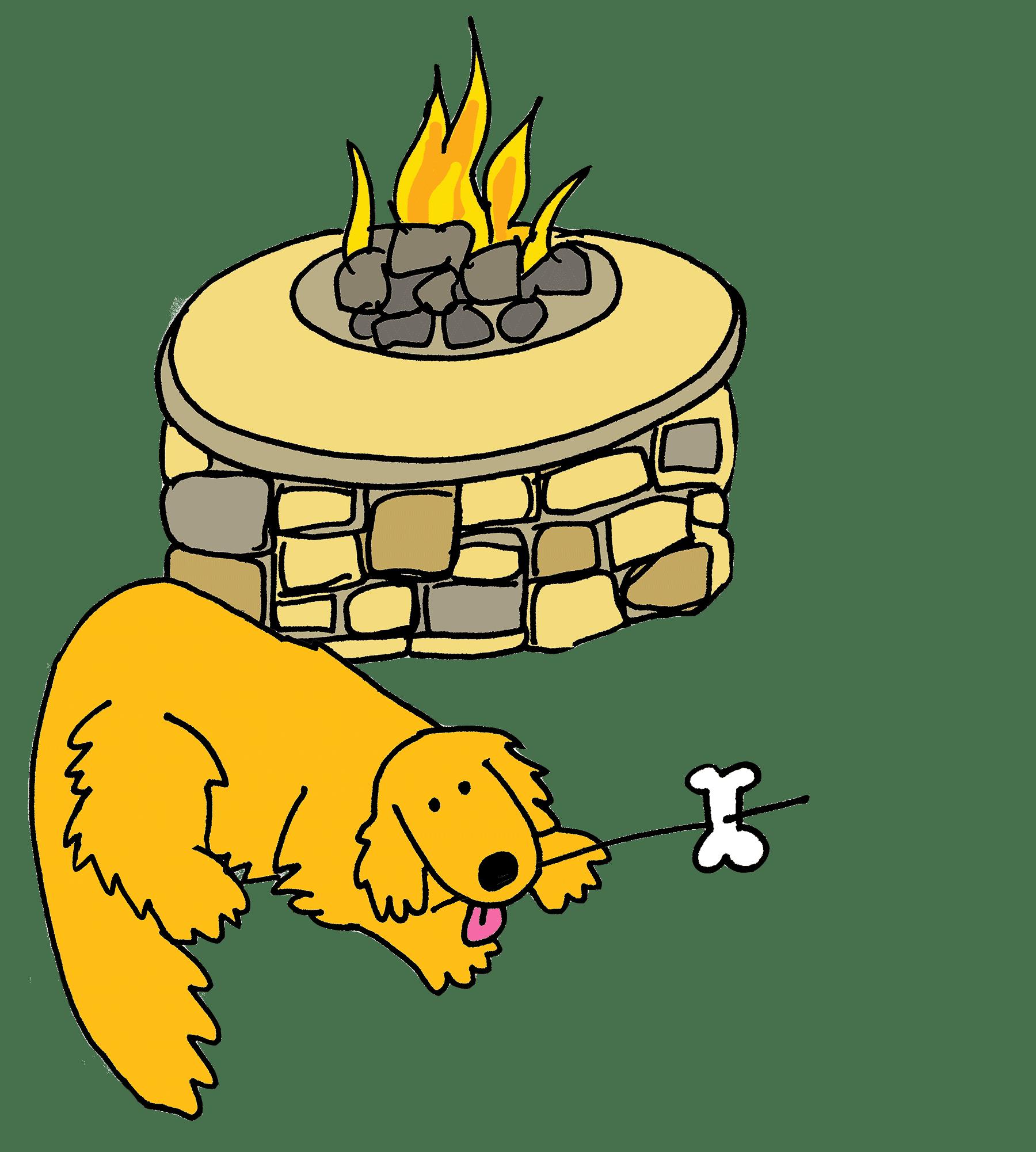 Adopt a Golden Knoxville | Golden Retriever Rescue